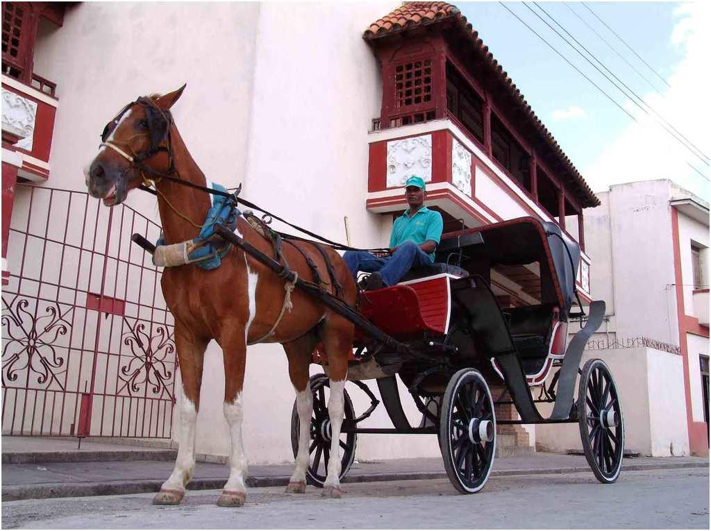 calèche à Varadero, Cuba